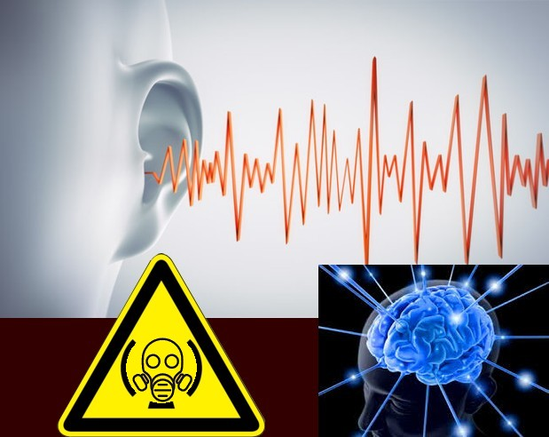 pollution sonore eam expertise